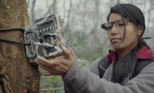 A Google Glass Explorer Story: Into The Wild