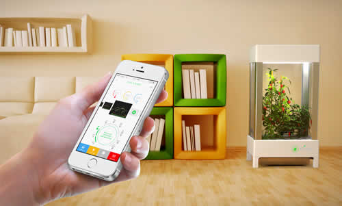 Niwa – Grow Your Plants With Your Smartphone
